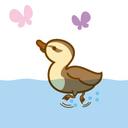 duck2germany's blog