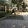 台湾旅行 3回目 2017.7 台北 5日目  鶯歌陶瓷老街で陶器をゲットせず!