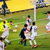 サッカー日本代表ハリルホジッチ元監督解任劇の真相