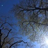 12月17日「宇宙意識・鮮やかな発見」