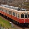 第1105列車 「 2連の赤胴車を俯瞰で狙う 2020・新春 阪神武庫川線紀行その1 」
