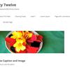 WordPress Twentytwelve