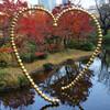 六本木 テレビ朝日の天気予報でお馴染みの毛利庭園で紅葉を楽しむ