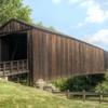建築材料~木材の種類と特徴について~【素人の建築学入門】