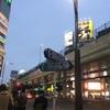 東京のOLのふくらはぎ最強説