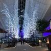 羽田空港国際線ターミナル イルミネーション点灯式に倉木麻衣ちゃん/アフターは焼肉チャンピオン