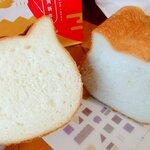 【福袋2021】 ねこねこ食パン 福袋 1,000円(税別) | ハートブレッドアンティーク 町田店