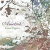 CDレビュー: Ametsub - Linear Cryptics (2006)