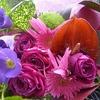 昨日は母の一日遅れのお誕生会&松田の花火を家族で鑑賞!
