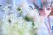 【お花のサブスク】一気に映える!ドールと生花で写真を撮ろう♪