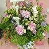 お届けしたお花たち。