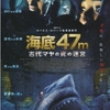 夏だ!海だ!サメ映画だ!『海底47m 古代マヤの死の迷宮』感想と見どころ