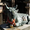 敦賀の天満宮には動物の像が多くて何だか小さな動物園