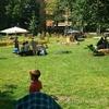 真夏の公園ピクニック