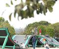 遊べる遊具がたくさんある公園「海南こどもの国」【愛知・弥富市】