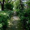2018年7月13日(金)荒川河口ルーティン + 彩湖 83.93km Part 1/2
