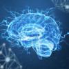 脳を直接刺激するニューロモデュレーション技術の発展