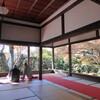 【宝泉院】抹茶と楽しむ五葉松&紅葉額縁庭園!恐怖の血天井にライトアップも♪