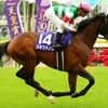 【今週の注目】春のマイル王決定戦・安田記念の行方は?&阪神競馬のスタートを飾る鳴尾記念など