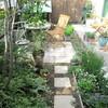 今朝の庭と、色がにぎわう 朝のテーブル