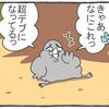ハトぱっぱ25