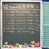 子猫ちゃんフェアー中!・・・・¥128,000から・・・是非っ!!