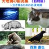 【TOCANA】大地震の前兆か!? 続出する動物の異常行動