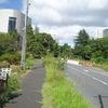 都心の田舎道
