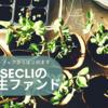 【バリューアップから始めます】ASSECLIの再生ファンド