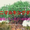 【2019WDWハネムーン旅行記⑩】パーク2日目アニマルキングダム、サファリルックのキャラクターに会いに行こう!