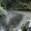BIKE 77km 大出水の湧水