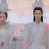 【霜花の姫~香蜜が咲かせし愛~】 香蜜沈沈燼如霜 #45まで視聴