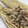 世界が注目する日本の国民食「納豆」その恐るべきダイエット効果とは?