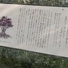 万葉歌碑を訪ねて(その491)―奈良市神功4丁目 万葉の小径(27)―万葉集 巻十九 四一五九