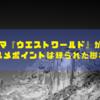 海外ドラマ『ウエストワールド』が面白い!オススメポイントは練られた脚本!!