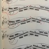 (バイオリン)バイオリンの課題が一気に進みました。