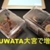 KUWATA大宮参戦!!戦利品の紹介と早朝到着からの整理券ゲット→先行入場までをレポします。