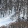冬の鶴間池小舎