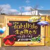 2018/12/15 新企画展「イロトリドリの生き物たち」、本日スタート!