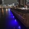 【らーめん】鶏soba 座銀 (肥後橋)