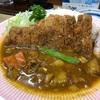 町田でカレーを食べるなら リッチなカレーの店アサノ