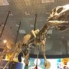 上野に行きました。〜国立科学博物館編〜