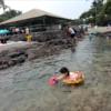 2018年夏ハワイ島家族旅行(7) 4日目 Kahalu'u Beach Parkへ