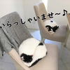猫と映画鑑賞!映画レビュー!