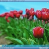 Windows8 Release Previewを動かしてみた