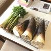 【協力隊日記】大家さんから孟宗筍とミズをいただき、実家でうまうまと食べる。