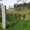 大江町の歴史と史跡をご紹介!(原始古代〜南北朝動乱の時代編)⚔️