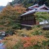京都・清滝川沿いで出会った風景