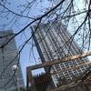 【日常】飯田橋でも桜は咲かず