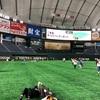 【ベイスターズ観戦No.8②】●4-7ジャイアンツ 2019年5月23日